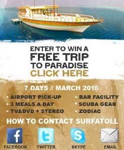 Enter to win a Free Trip to paradise click here.