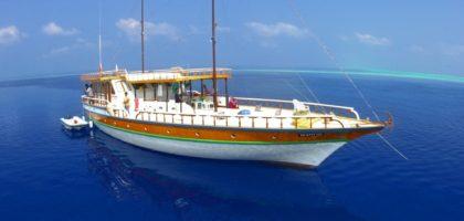 Ocean Catcher