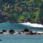 mirissa-surf